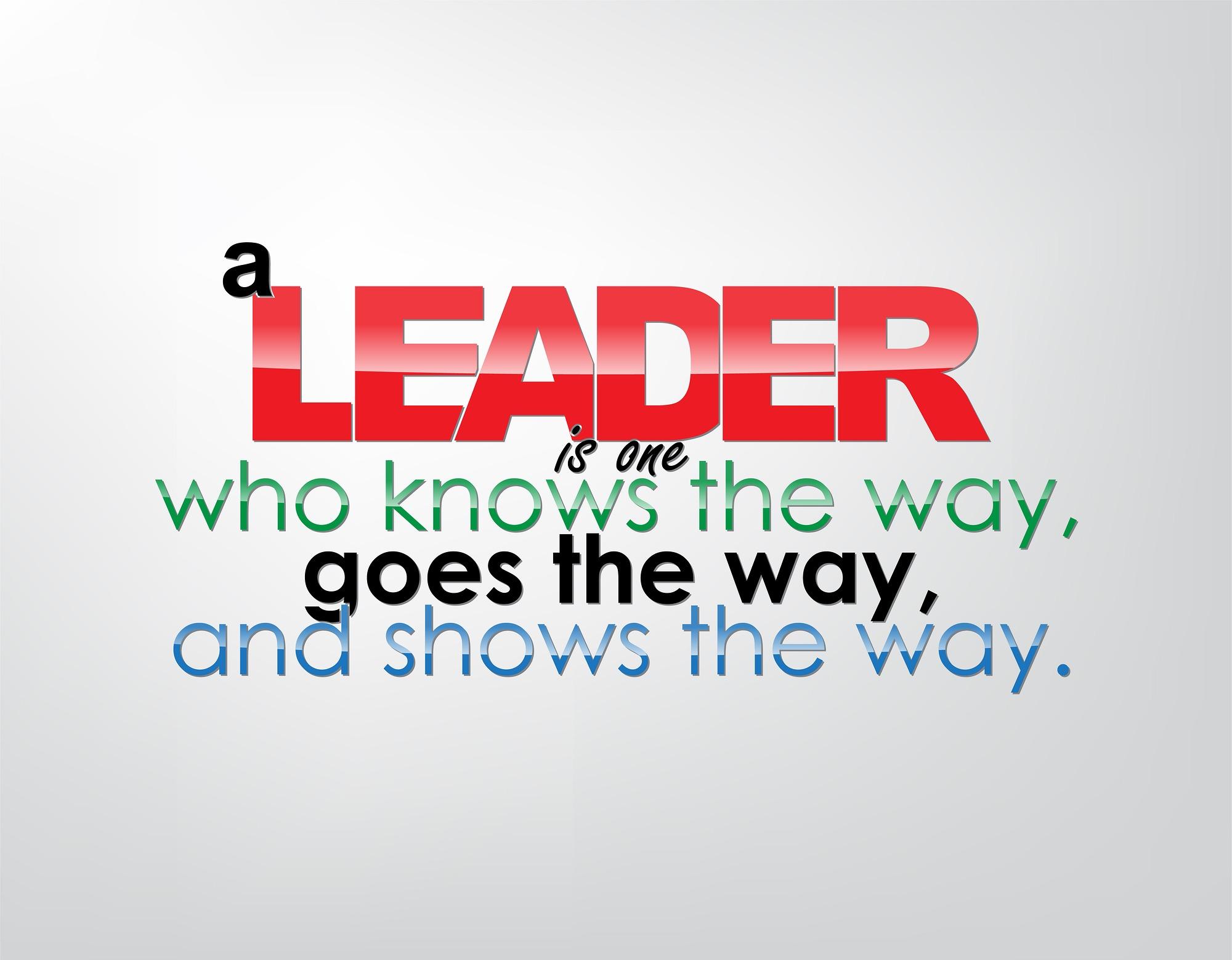 Leadership DISC Profiles