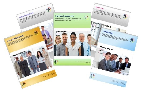 What are DISC Assessments Report Samples