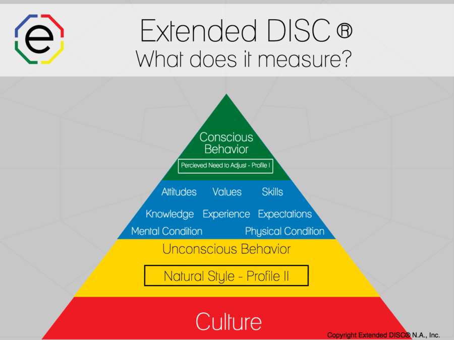 What Does DISC Measure Infographic