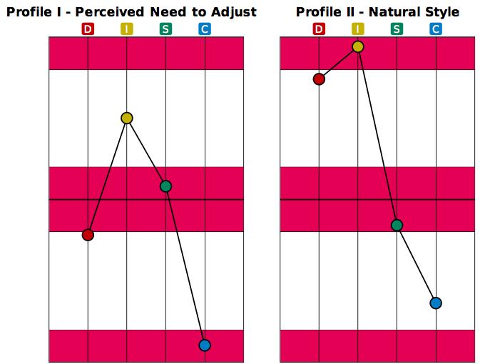DISC Profiles Sample