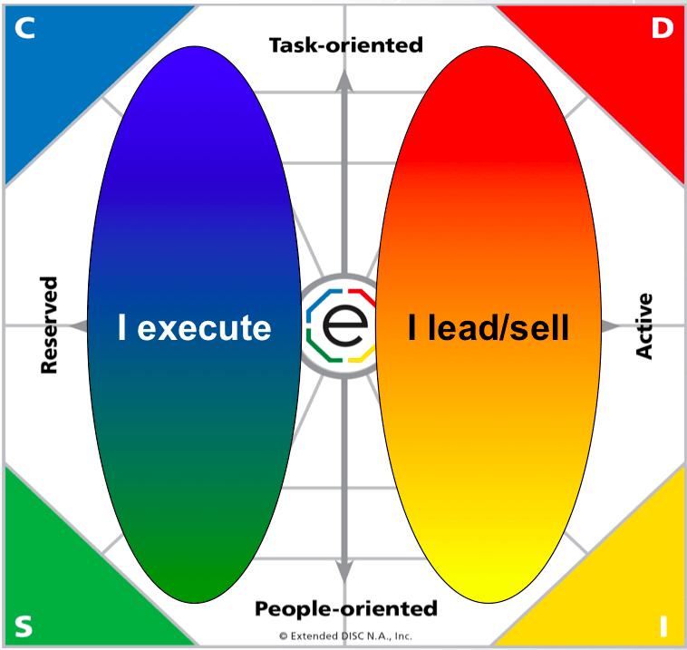Extended DISC Diamond Basic Profile Type I Lead - I Execute
